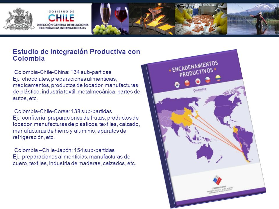 Estudio de Integración Productiva con Colombia