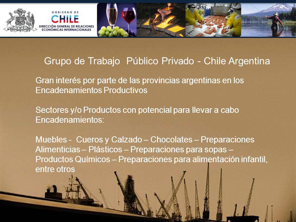Grupo de Trabajo Público Privado - Chile Argentina