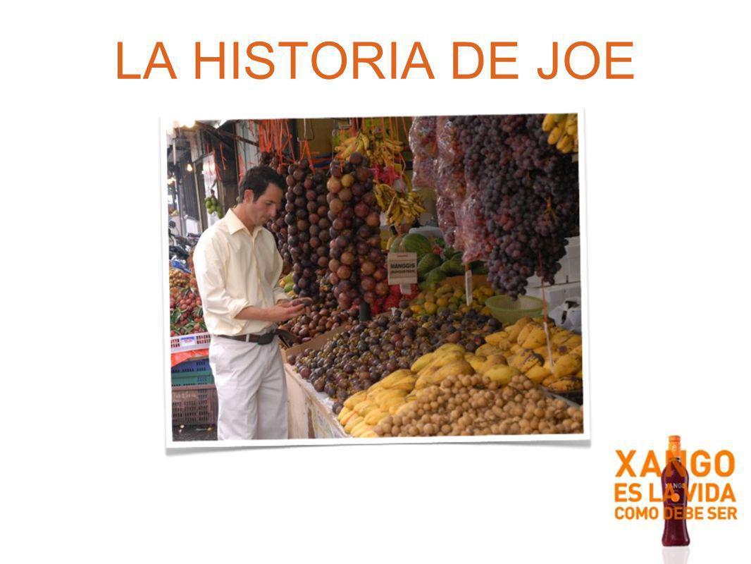 LA HISTORIA DE JOE