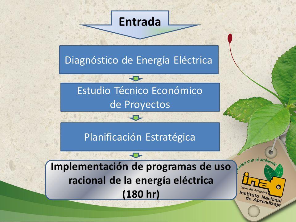 Implementación de programas de uso racional de la energía eléctrica