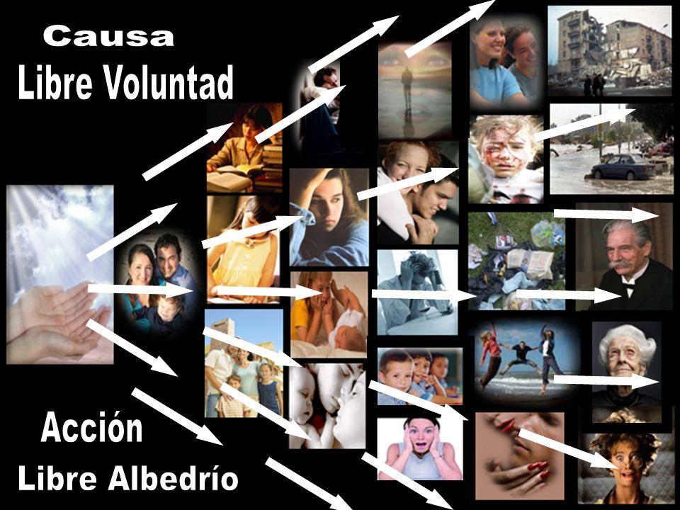 Causa Libre Voluntad Acción Libre Albedrío