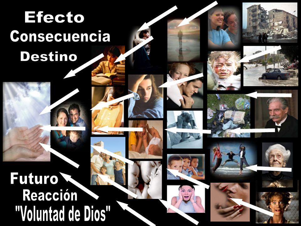 Efecto Consecuencia Destino Futuro Reacción Voluntad de Dios