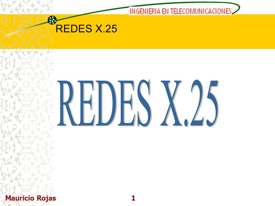 REDES X.25 Mauricio Rojas