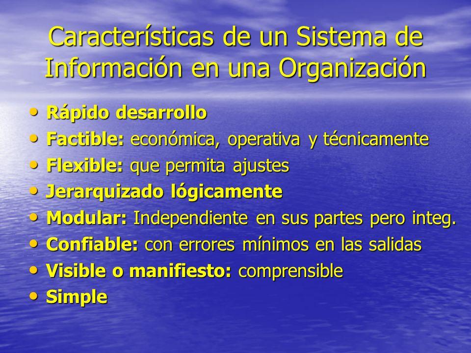 Características de un Sistema de Información en una Organización