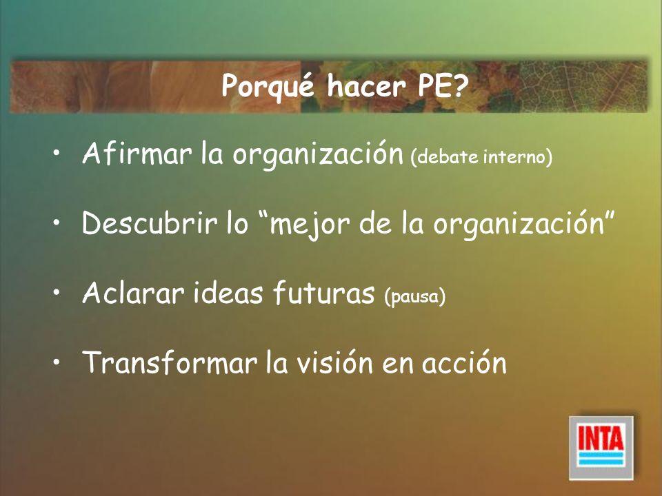 Porqué hacer PE Afirmar la organización (debate interno) Descubrir lo mejor de la organización Aclarar ideas futuras (pausa)