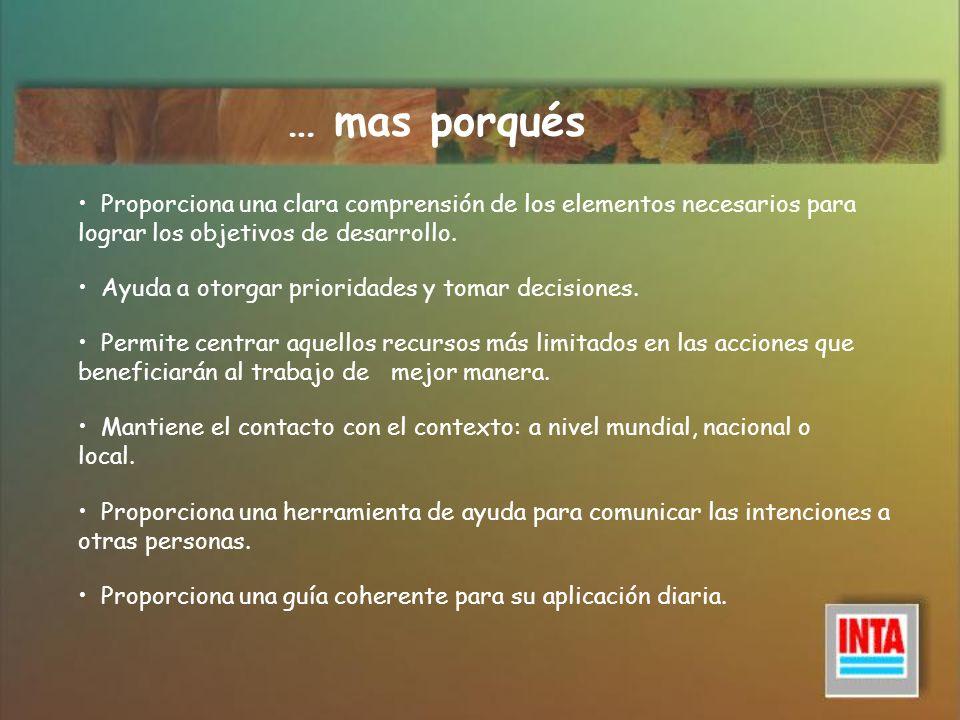 … mas porquésProporciona una clara comprensión de los elementos necesarios para lograr los objetivos de desarrollo.