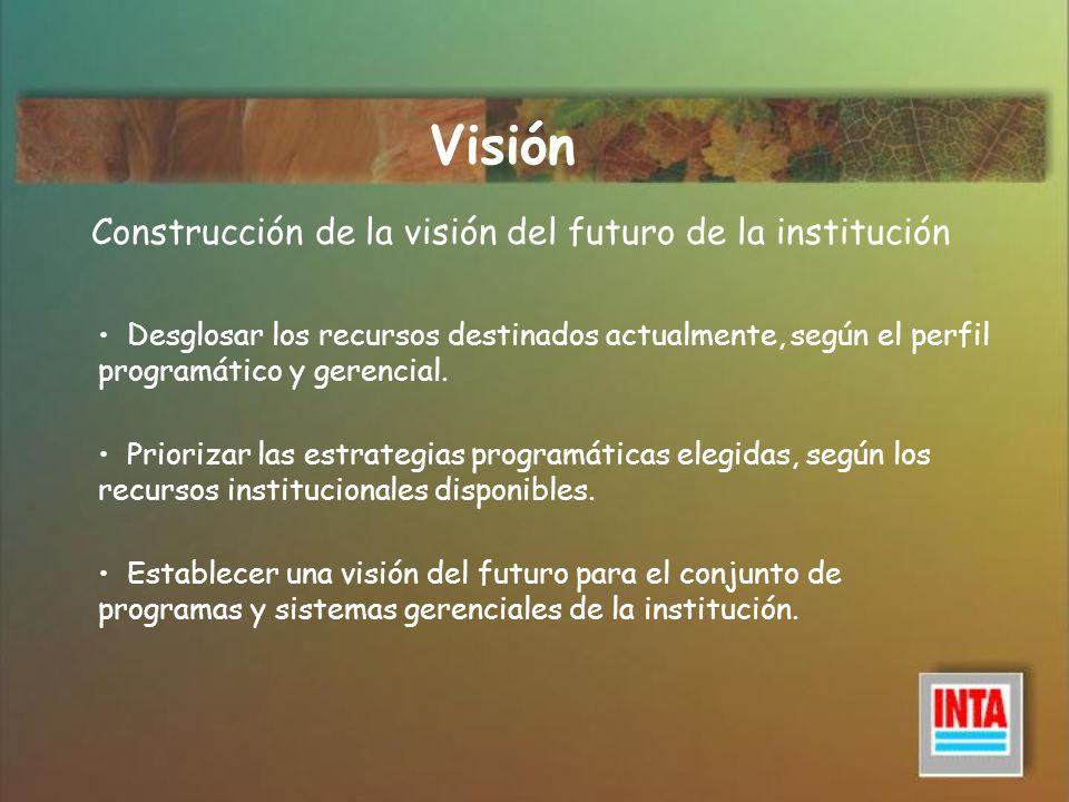 Visión Construcción de la visión del futuro de la institución