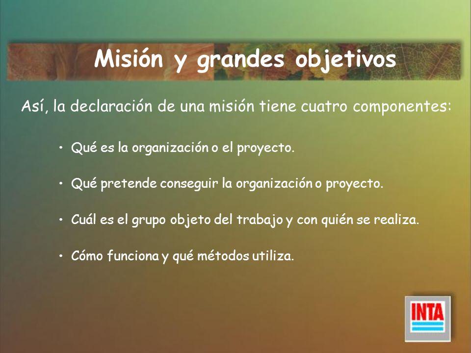 Misión y grandes objetivos