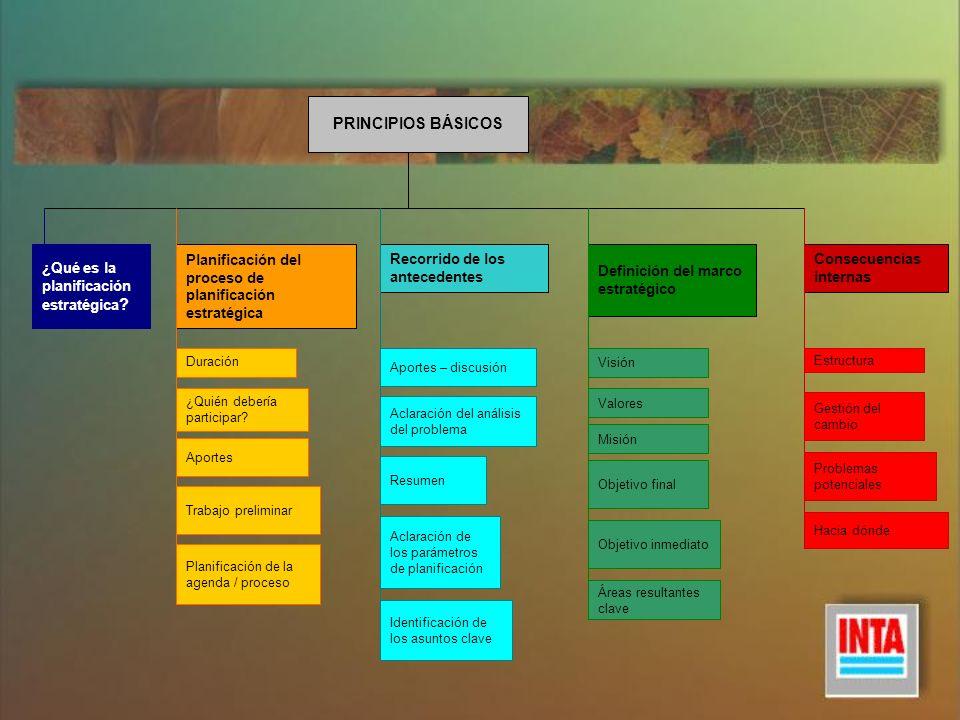 PRINCIPIOS BÁSICOS ¿Qué es la planificación estratégica