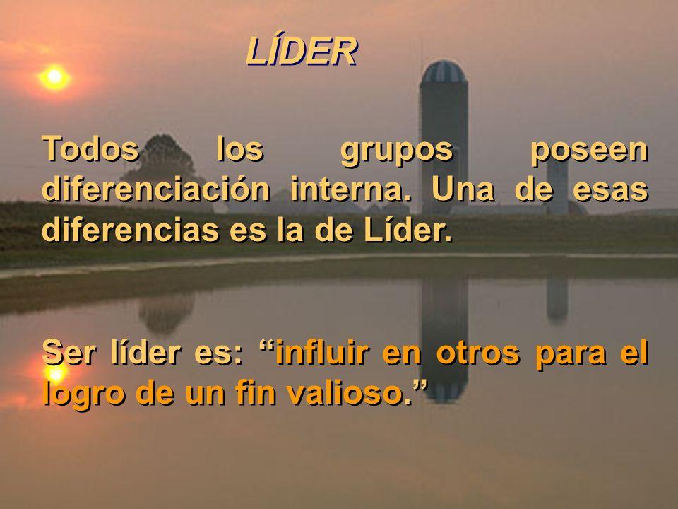 LÍDER Todos los grupos poseen diferenciación interna. Una de esas diferencias es la de Líder.
