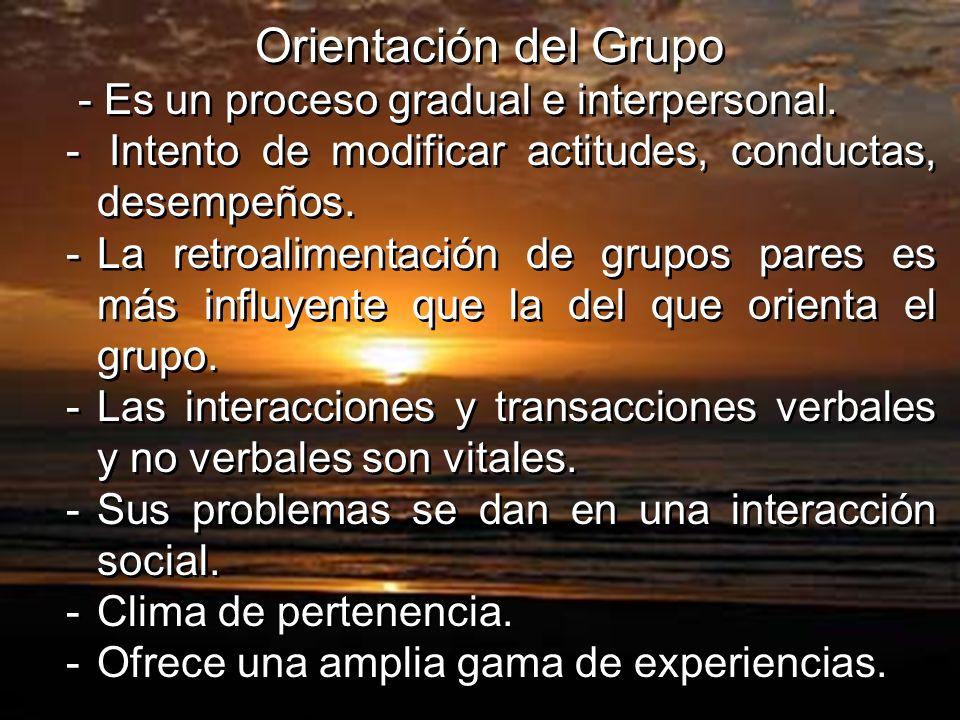 Orientación del Grupo - Es un proceso gradual e interpersonal. Intento de modificar actitudes, conductas, desempeños.