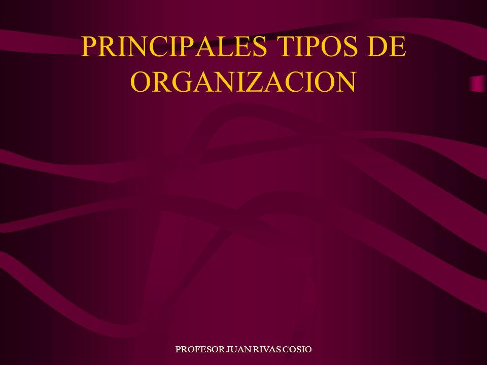 PRINCIPALES TIPOS DE ORGANIZACION