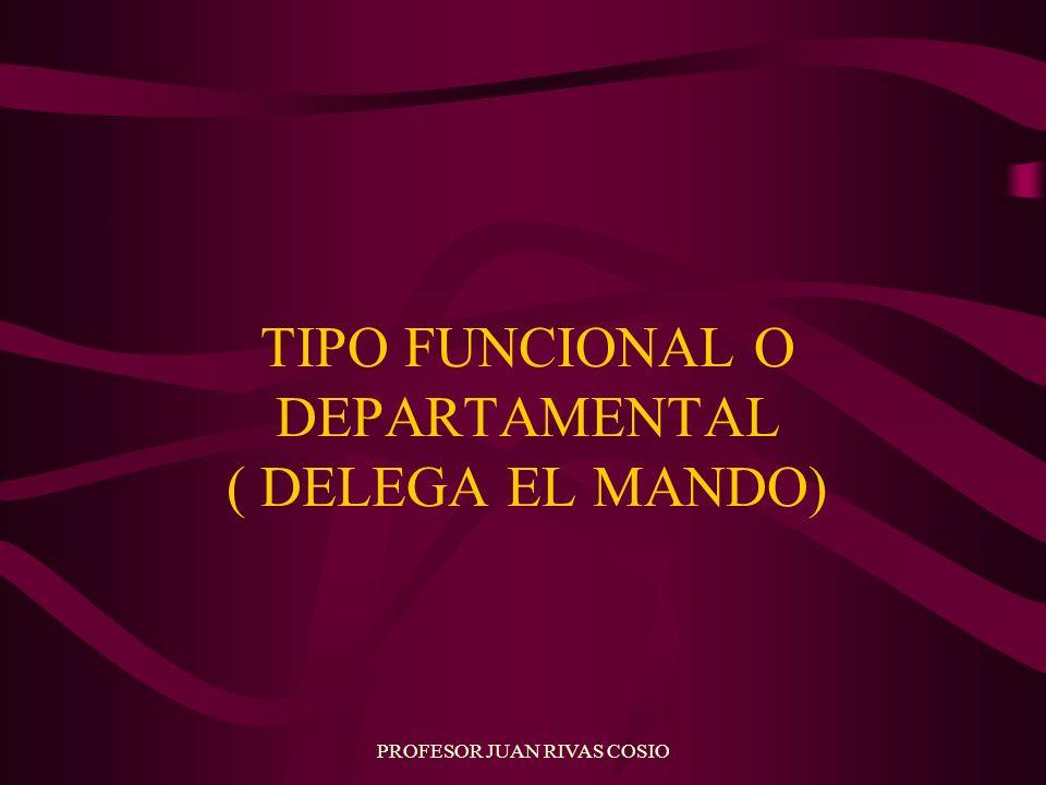 TIPO FUNCIONAL O DEPARTAMENTAL ( DELEGA EL MANDO)