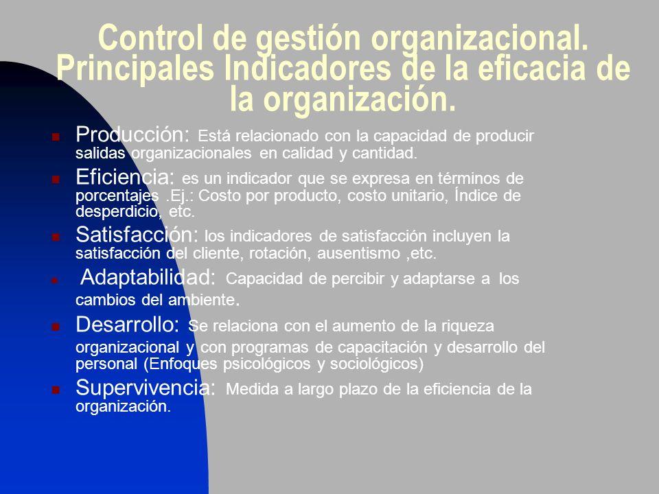 Control de gestión organizacional