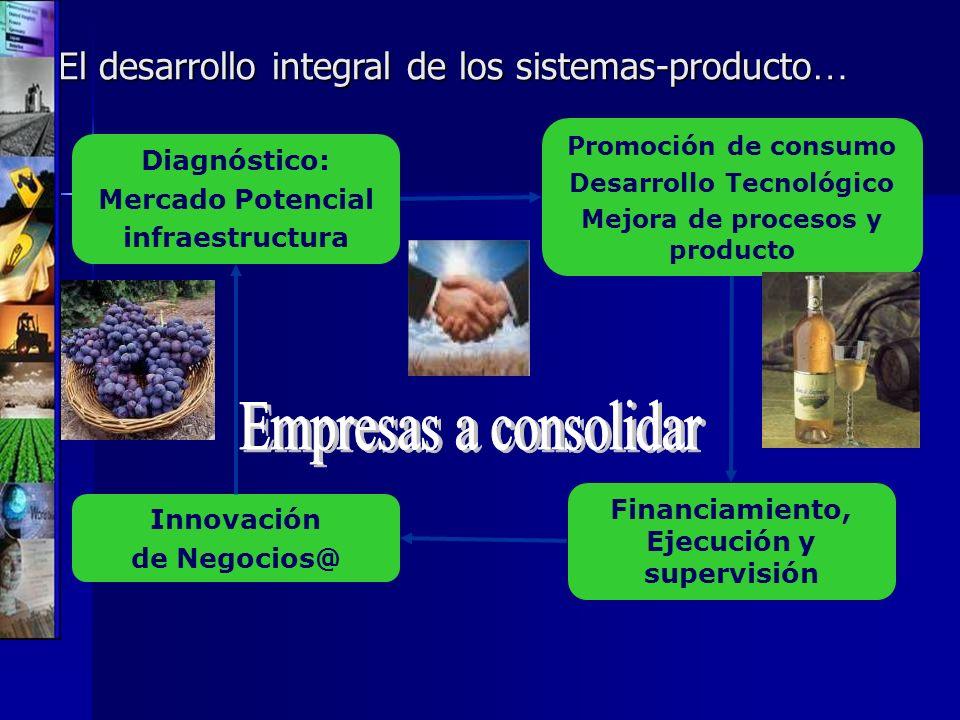 Empresas a consolidar El desarrollo integral de los sistemas-producto…
