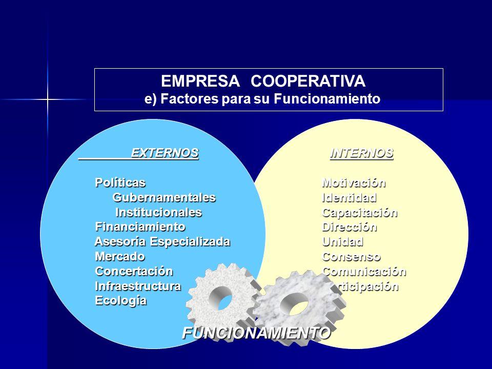 e) Factores para su Funcionamiento