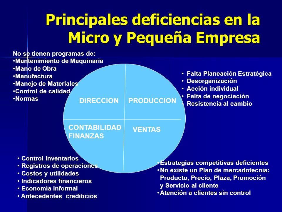 Principales deficiencias en la Micro y Pequeña Empresa