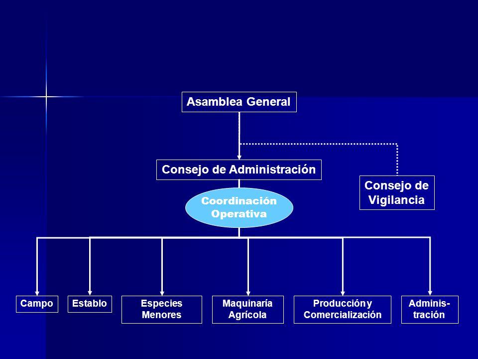 Consejo de Administración Producción y Comercialización