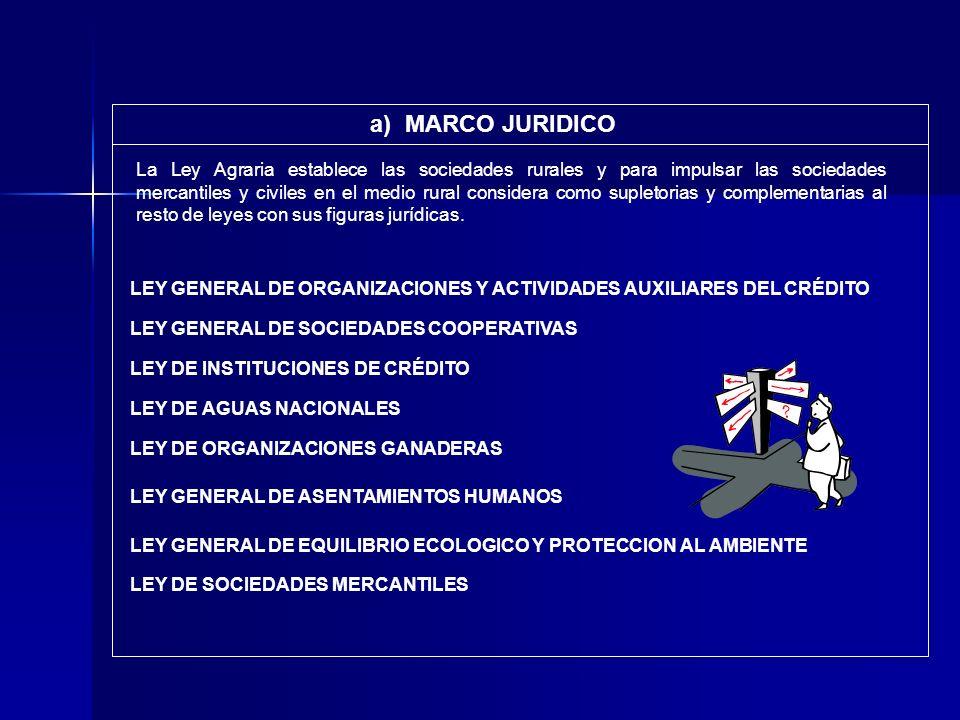 a) MARCO JURIDICO