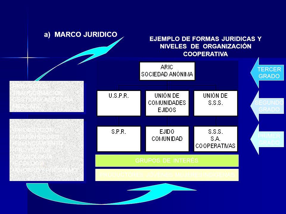 EJEMPLO DE FORMAS JURIDICAS Y NIVELES DE ORGANIZACIÓN