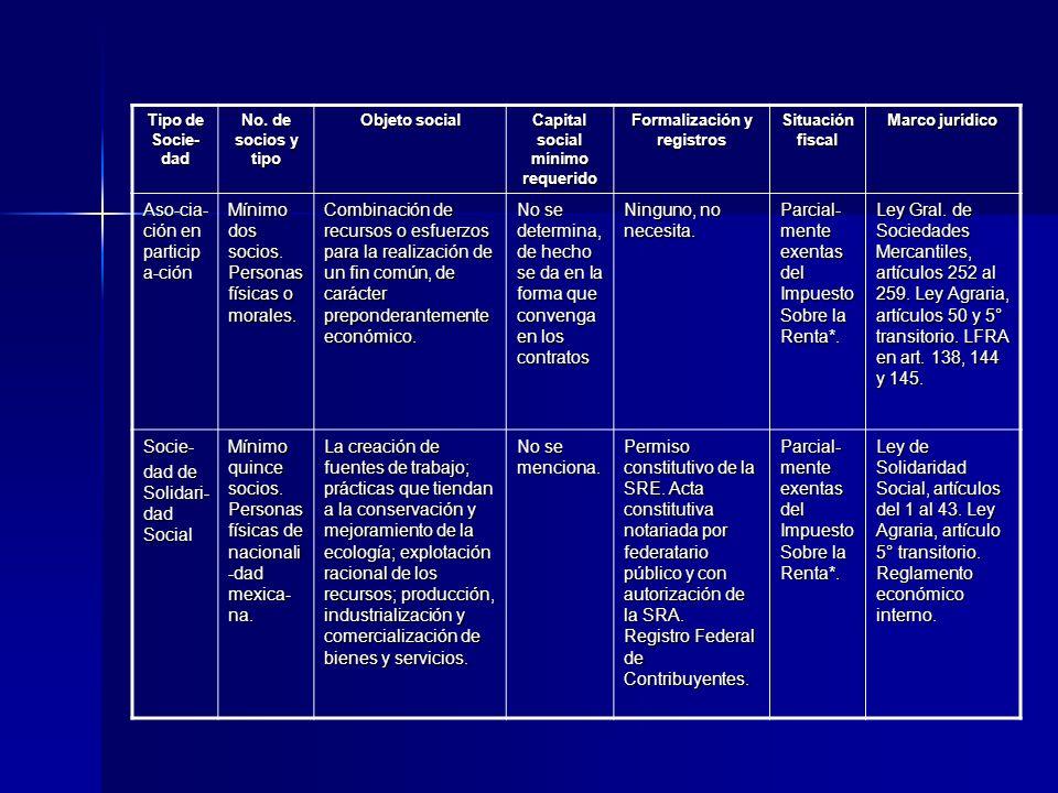 Capital social mínimo requerido Formalización y registros