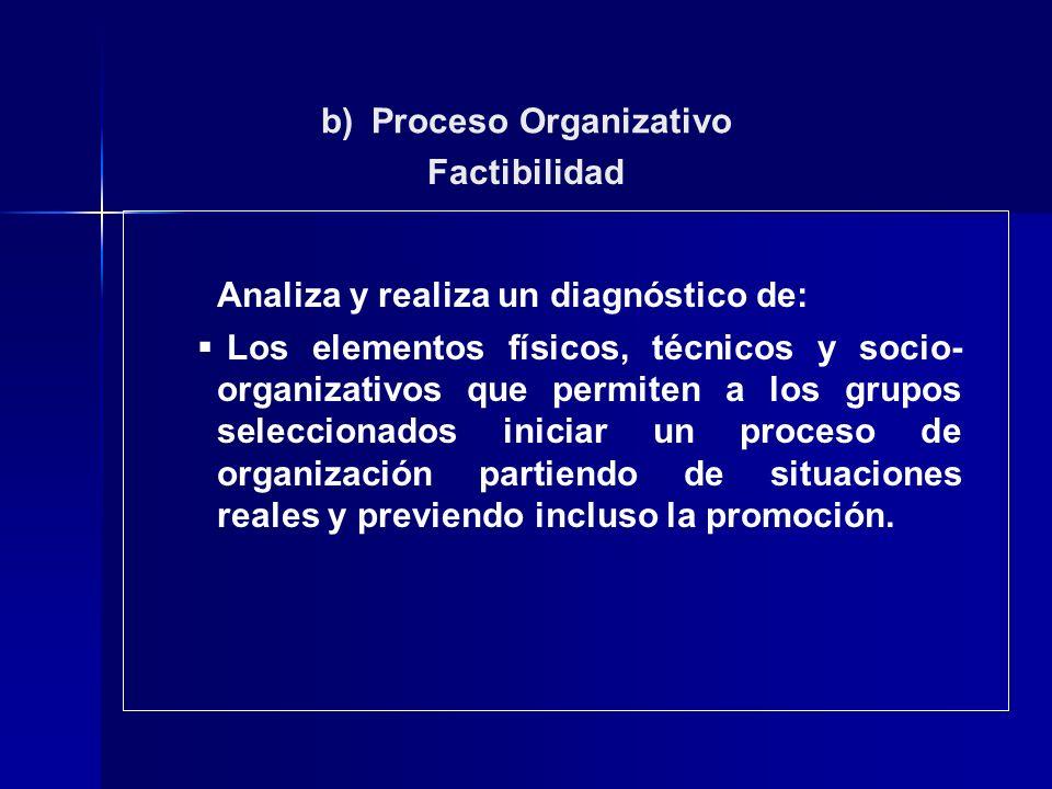 b) Proceso Organizativo