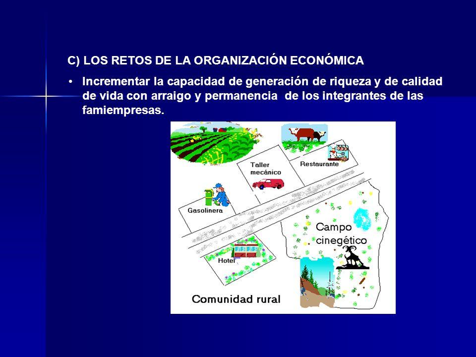 C) LOS RETOS DE LA ORGANIZACIÓN ECONÓMICA