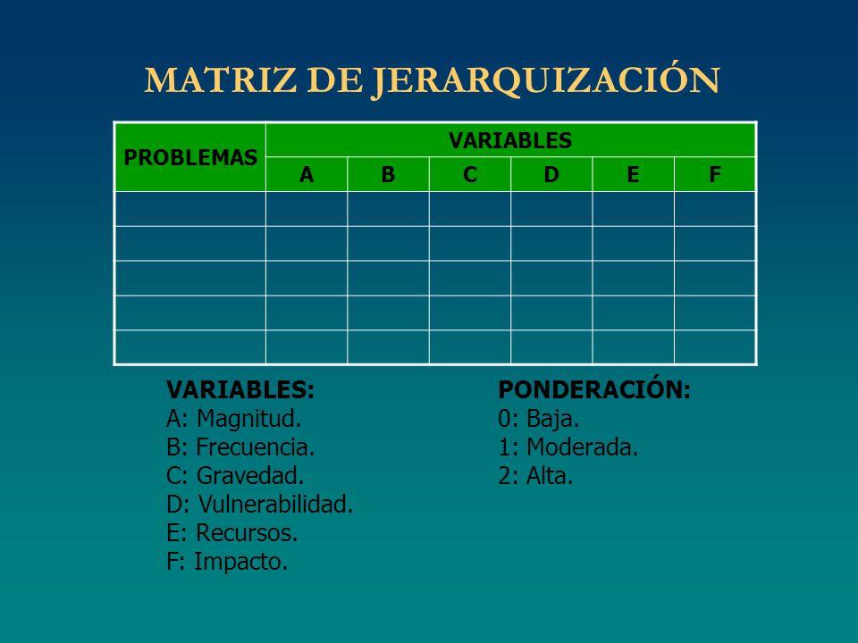 MATRIZ DE JERARQUIZACIÓN