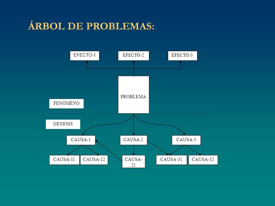 ÁRBOL DE PROBLEMAS: EFECTO-1 PROBLEMA CAUSA-1 CAUSA-2 CAUSA-3 CAUSA-11