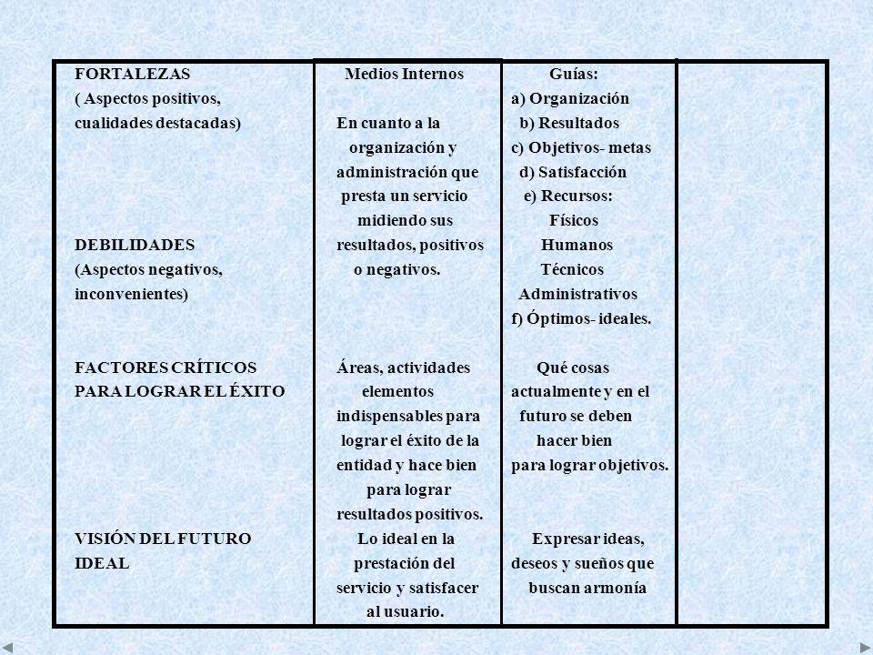 FORTALEZAS Medios Internos Guías: