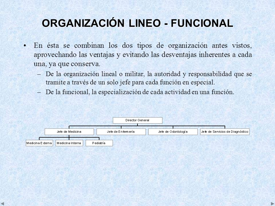 ORGANIZACIÓN LINEO - FUNCIONAL