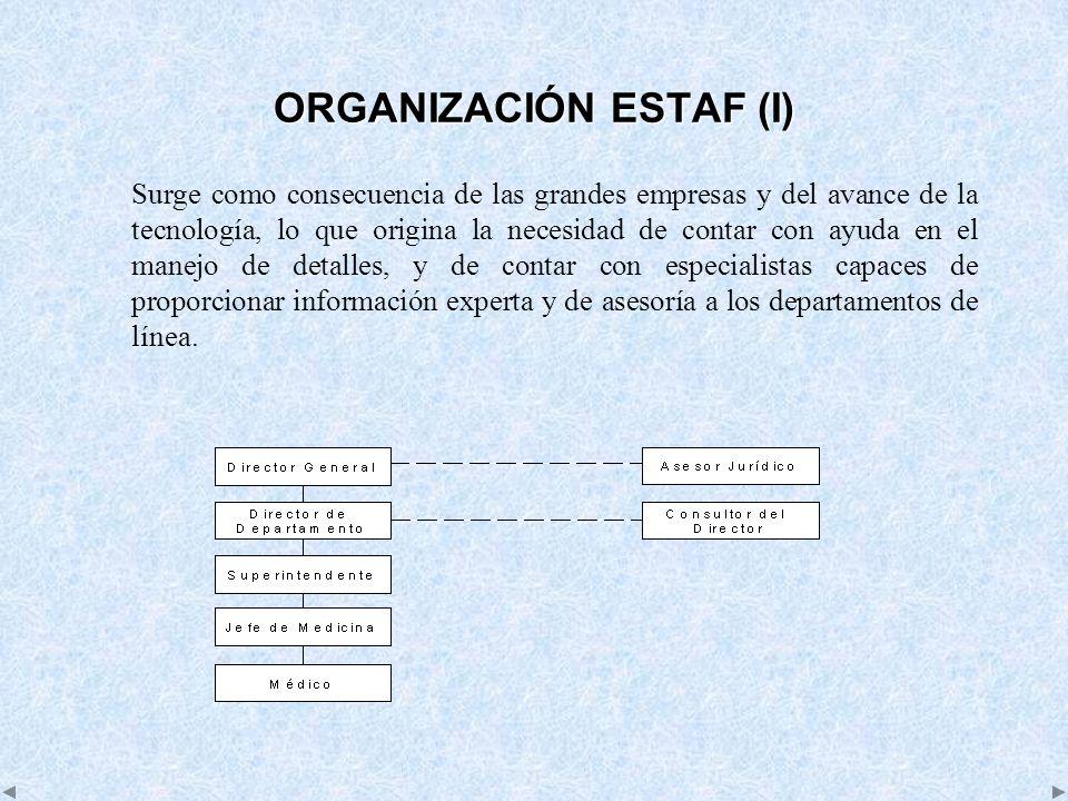 ORGANIZACIÓN ESTAF (I)