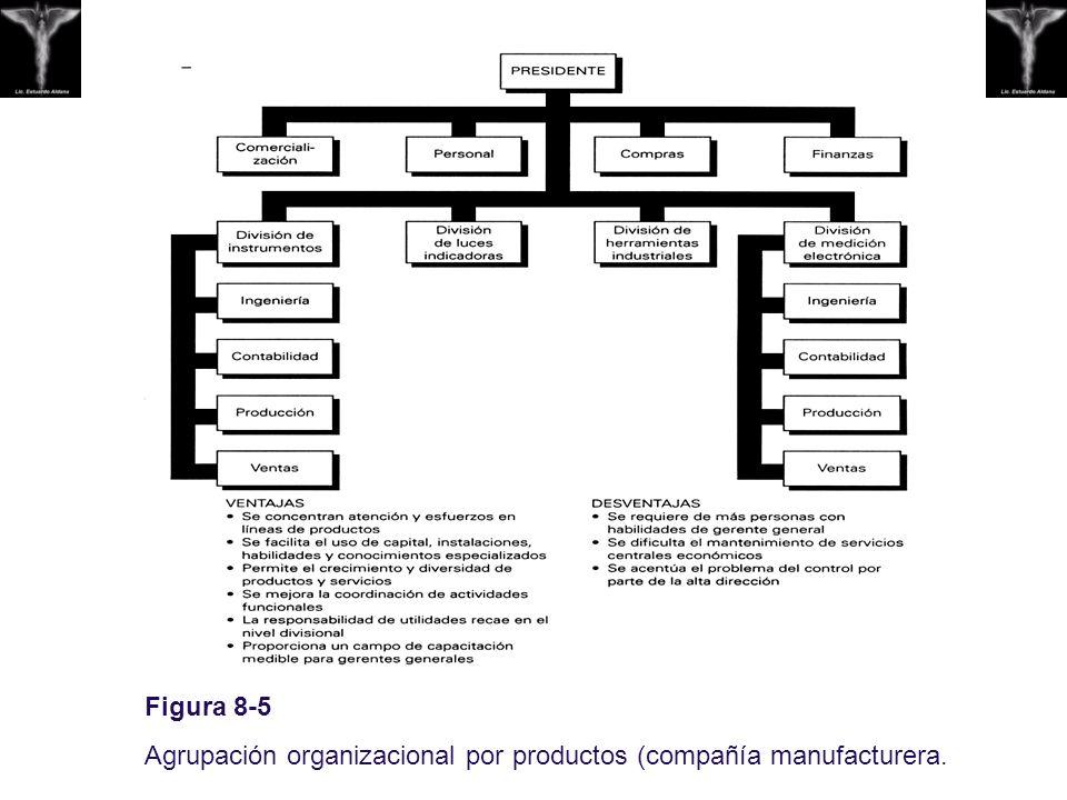 Figura 8-5 Agrupación organizacional por productos (compañía manufacturera.