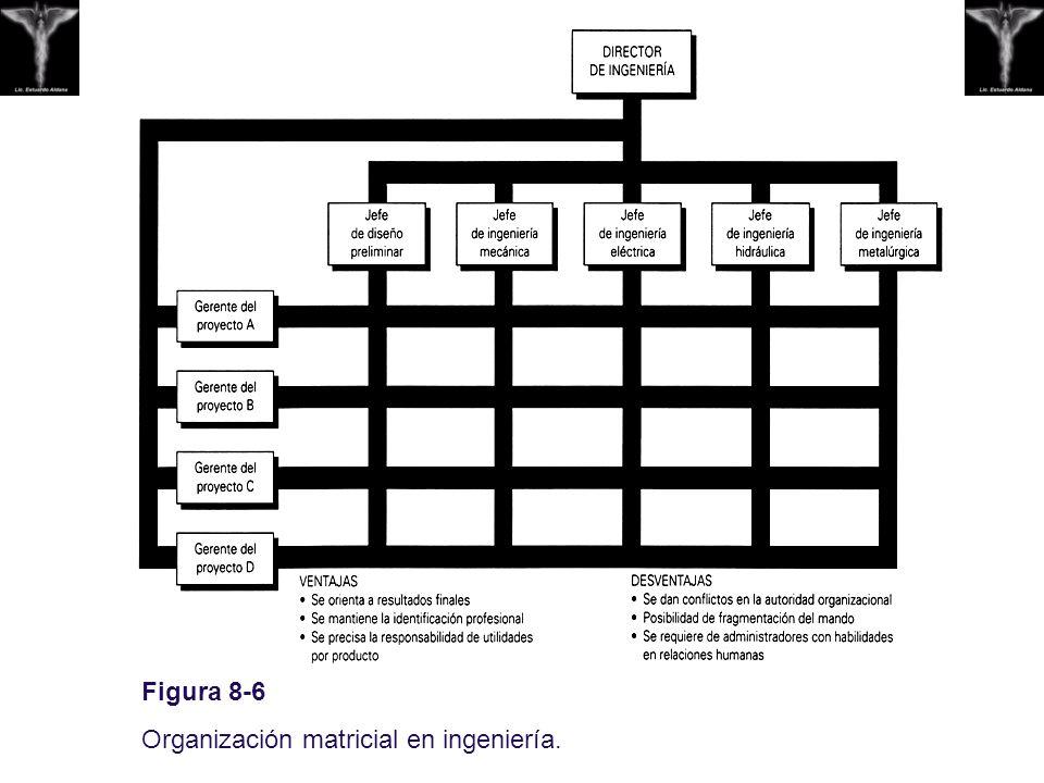 Figura 8-6 Organización matricial en ingeniería.