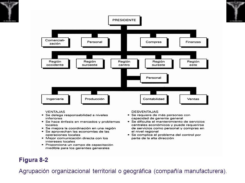 Figura 8-2 Agrupación organizacional territorial o geográfica (compañía manufacturera).