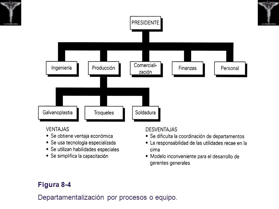 Figura 8-4 Departamentalización por procesos o equipo.