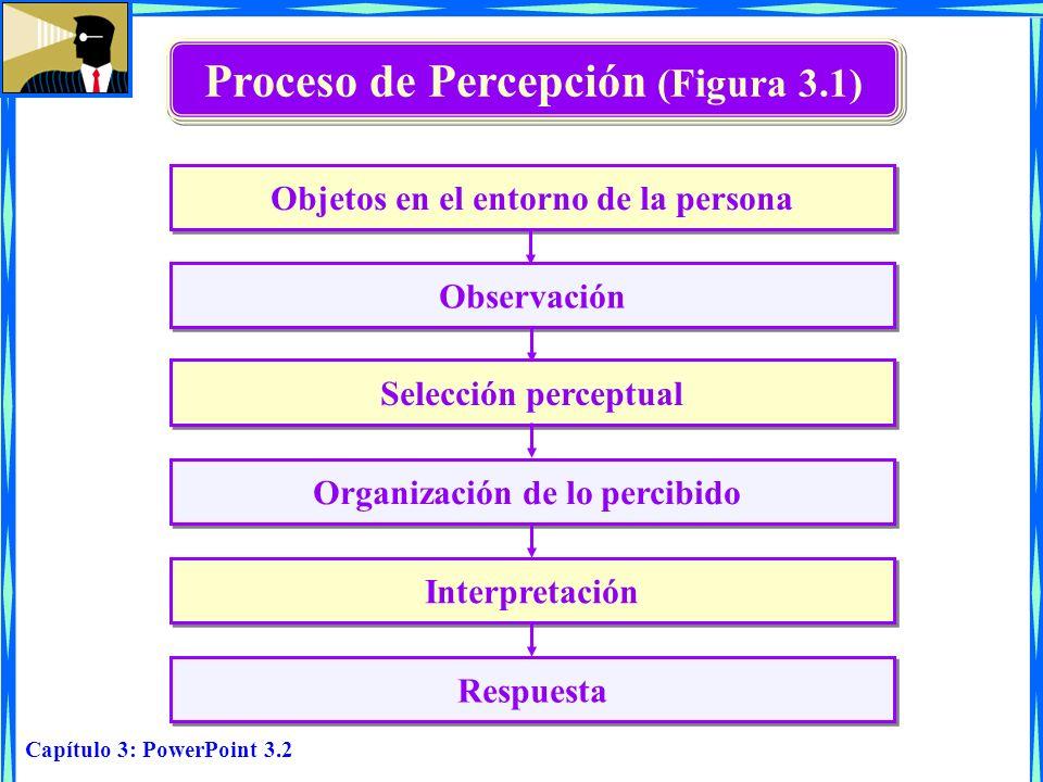 Proceso de Percepción (Figura 3.1)