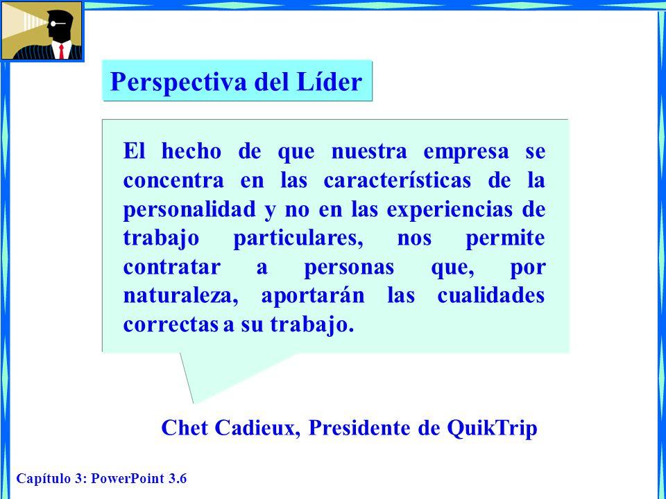 Perspectiva del Líder