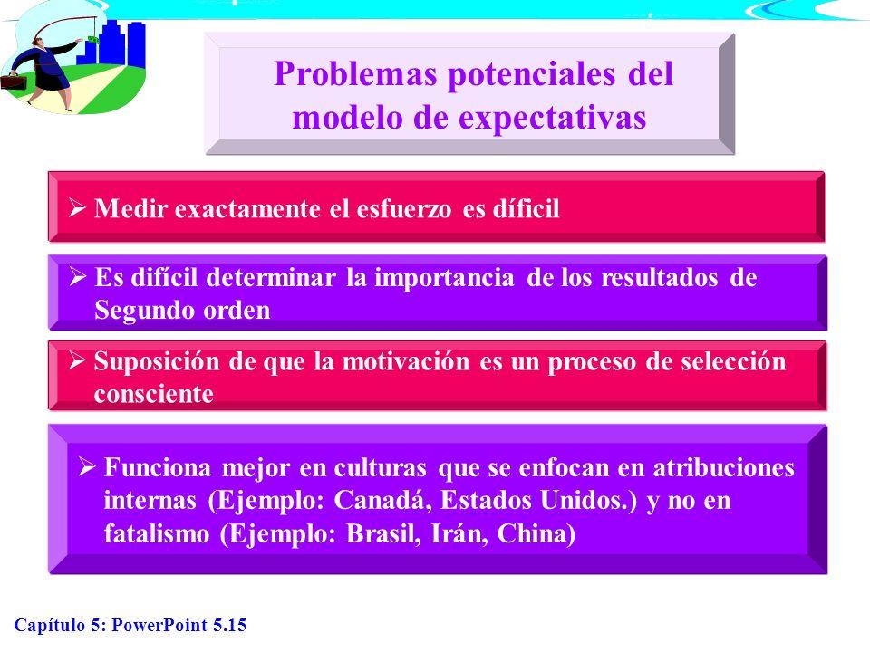 Problemas potenciales del modelo de expectativas