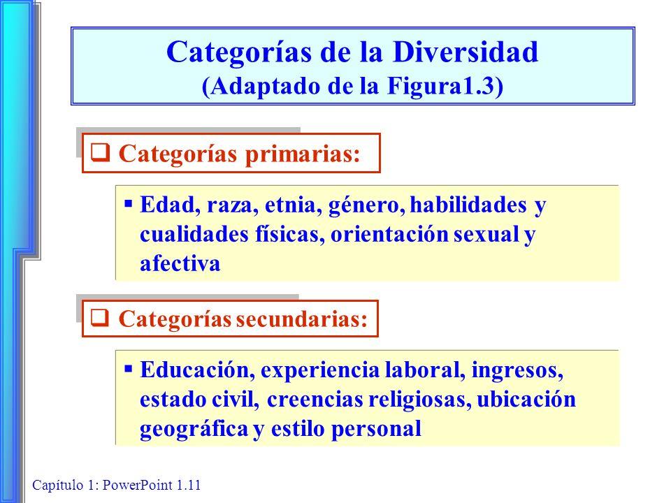 Categorías de la Diversidad (Adaptado de la Figura1.3)