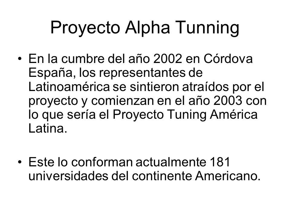 Proyecto Alpha Tunning