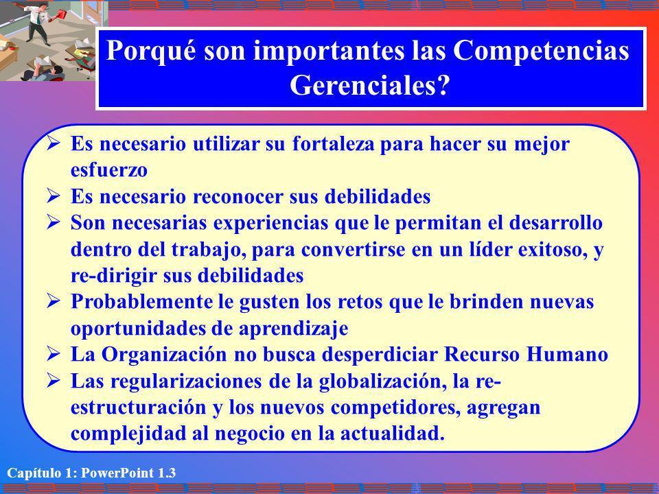 Porqué son importantes las Competencias
