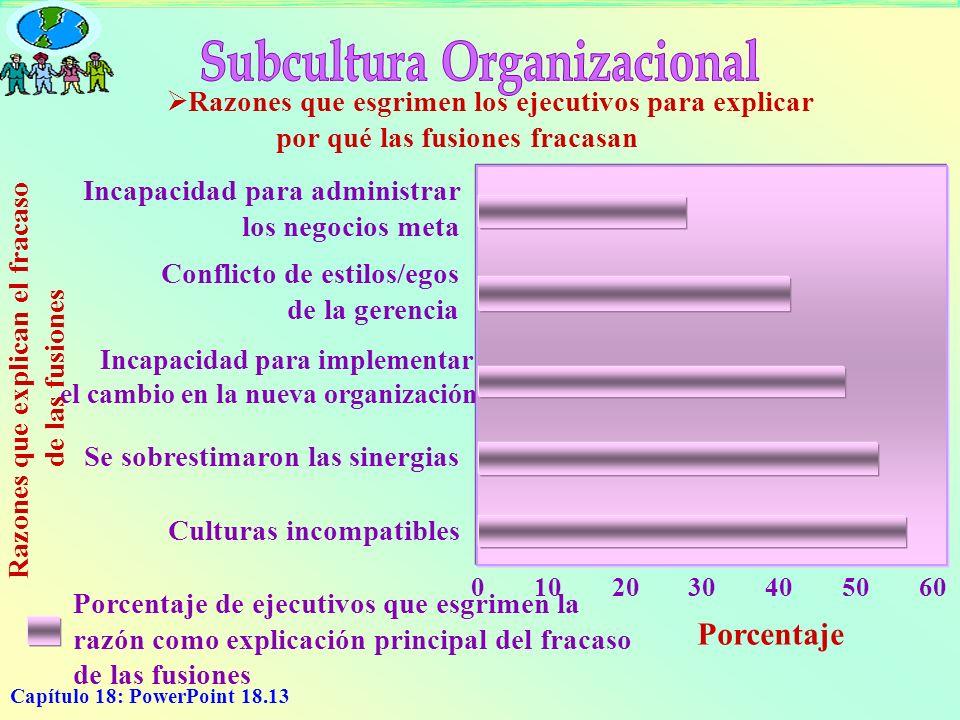 Subcultura Organizacional Razones que explican el fracaso