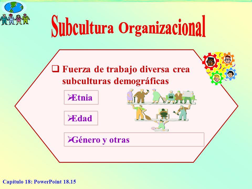 Subcultura Organizacional
