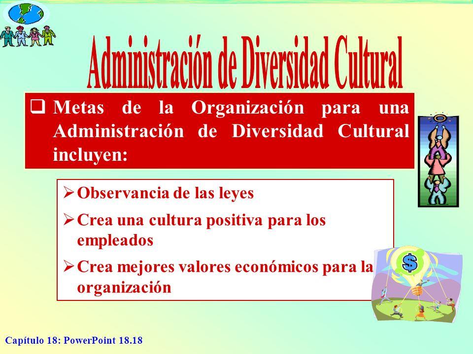 Administración de Diversidad Cultural