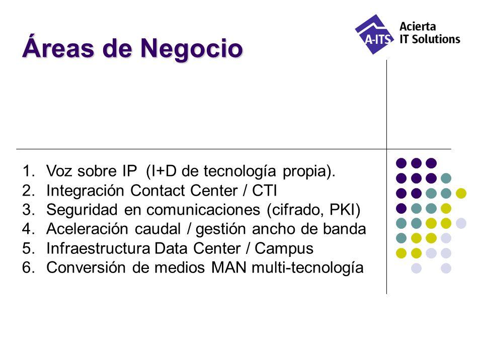 Áreas de Negocio Voz sobre IP (I+D de tecnología propia).