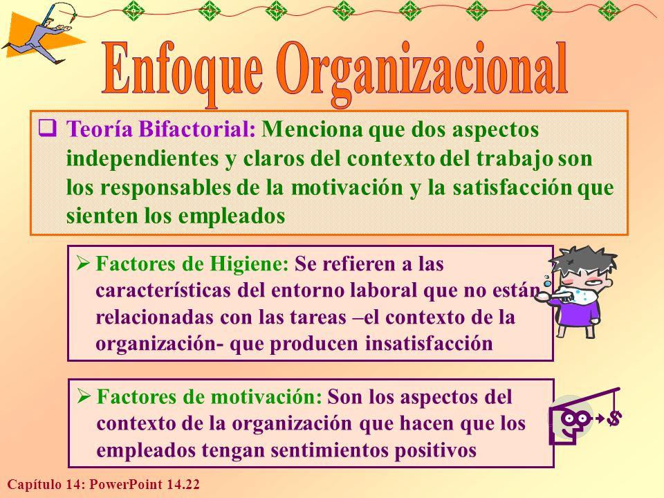 Enfoque Organizacional
