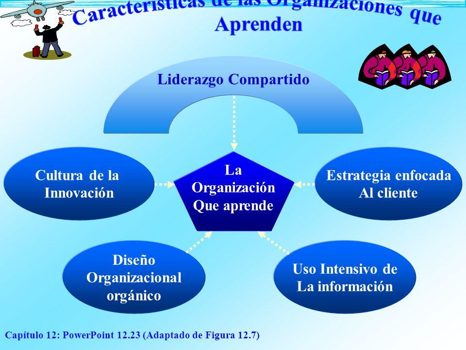 Características de las Organizaciones que