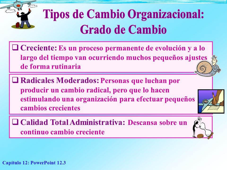 Tipos de Cambio Organizacional: