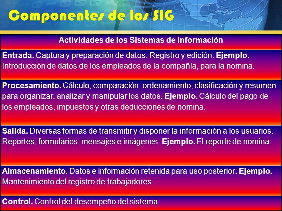 Actividades de los Sistemas de Información
